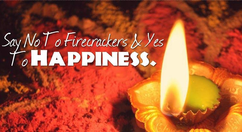 Only Diyas Celebration this Diwali