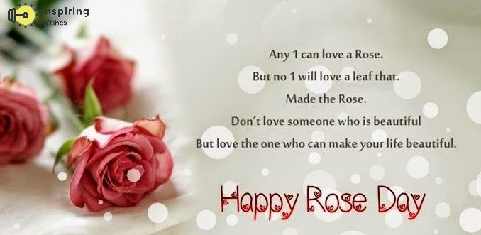 Amazing Rose Day Quotes for Lover