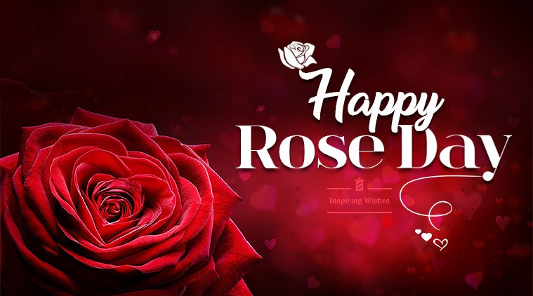 Best Rose Day Greeting Message