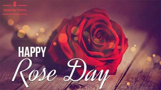 Happy Red Rose Day 2021 Wishes, Message