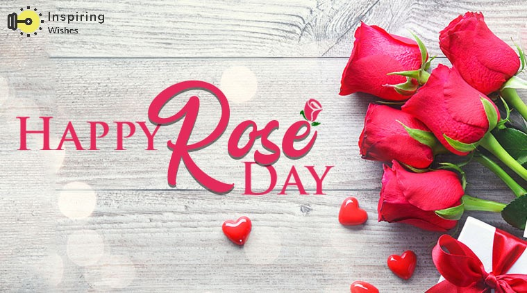 Best Red Rose Day 2020 Wishes | Greetings & SMS