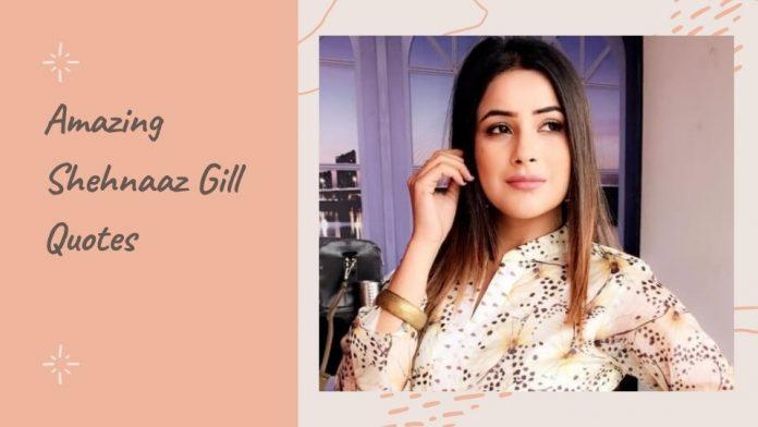 Amazing Shehnaaz Gill Sayings