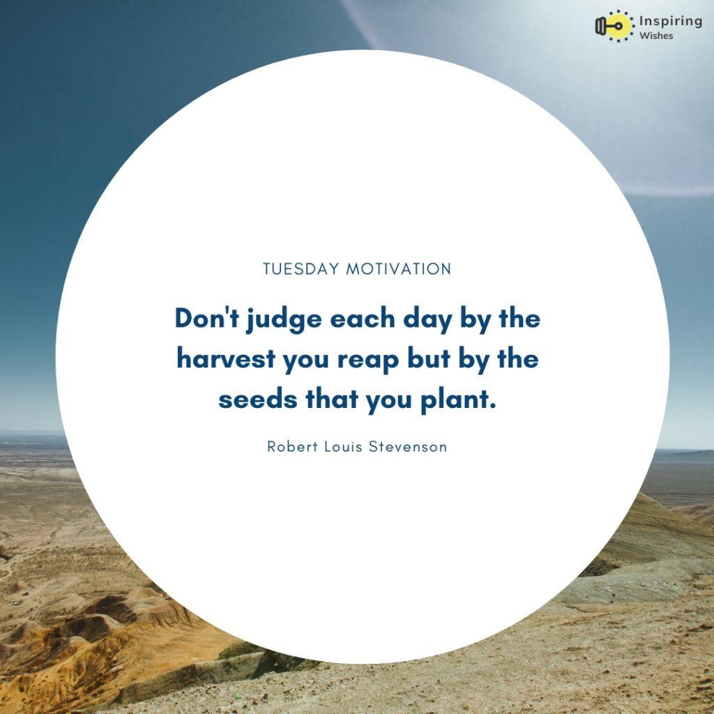 Tuesday Motivation Saying